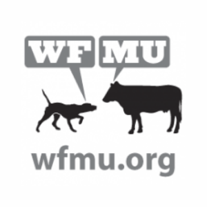 Radio WMFU FM 91.1