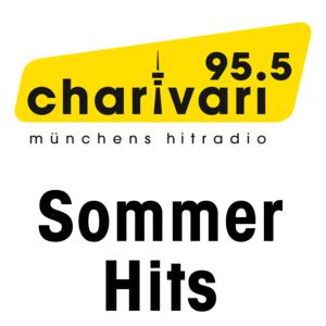 Sommer-Hits