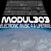 Radio Modul303