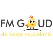 Radio FM Goud