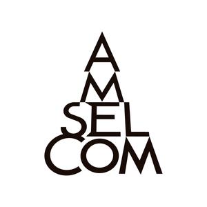 Radio Amselcom